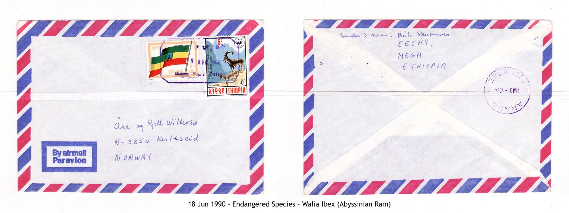 19900618 – Endangered Species – Walia Ibex (Abyssinian Ram)
