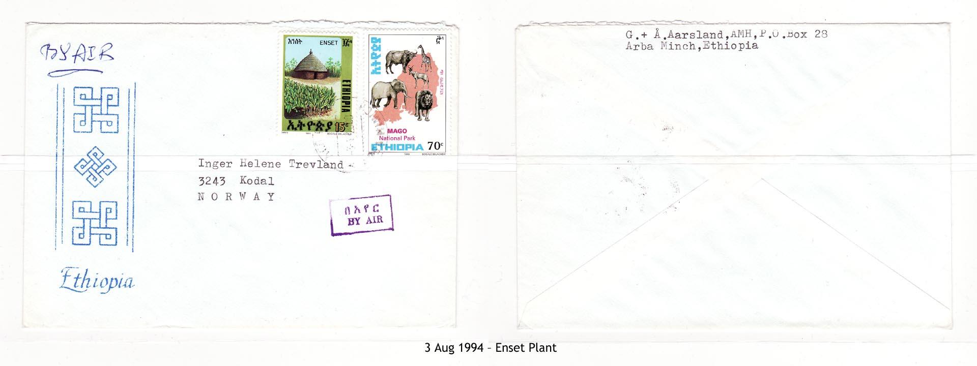 19940803 – Enset Plant