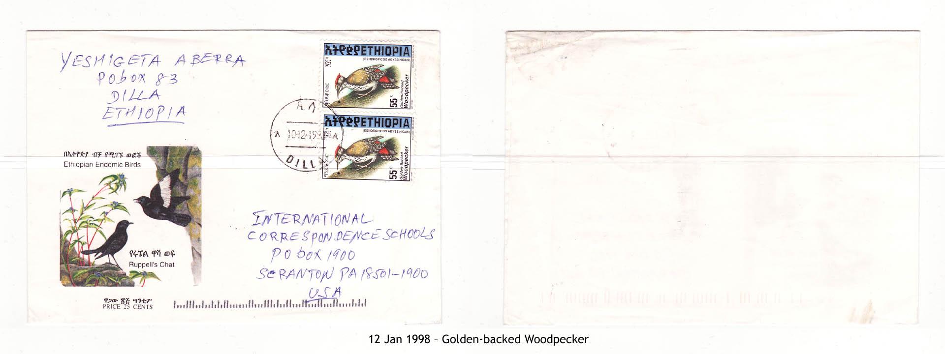 19980112 – Golden-backed Woodpecker