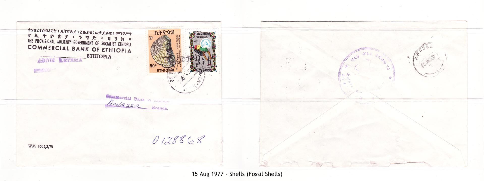 19770815 - Shells (Fossil Shells)