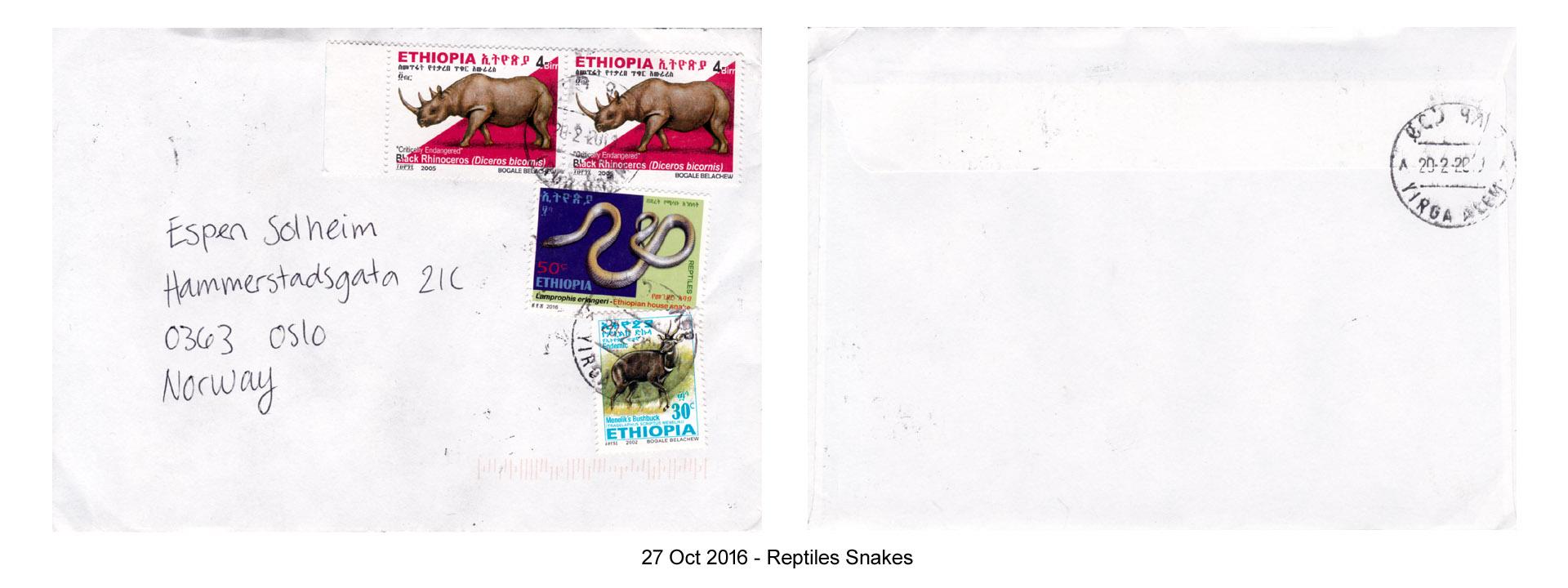 20161027 - Reptiles Snakes