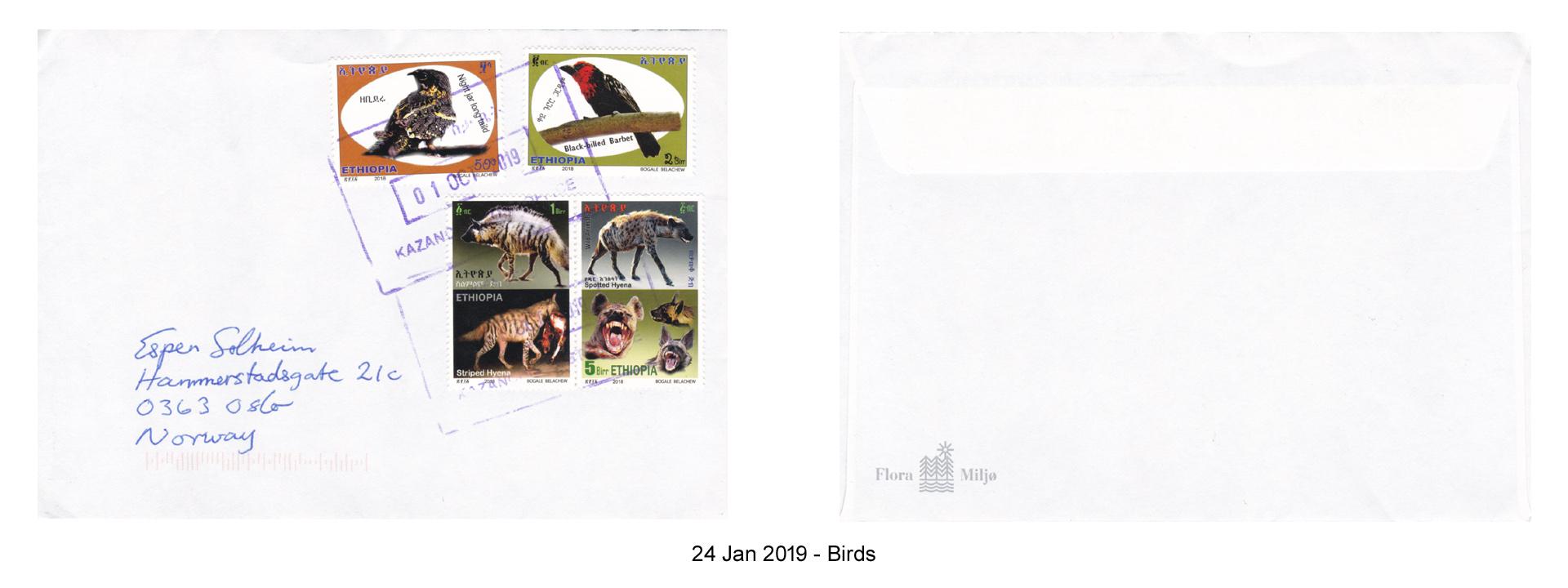 20190124 - Birds