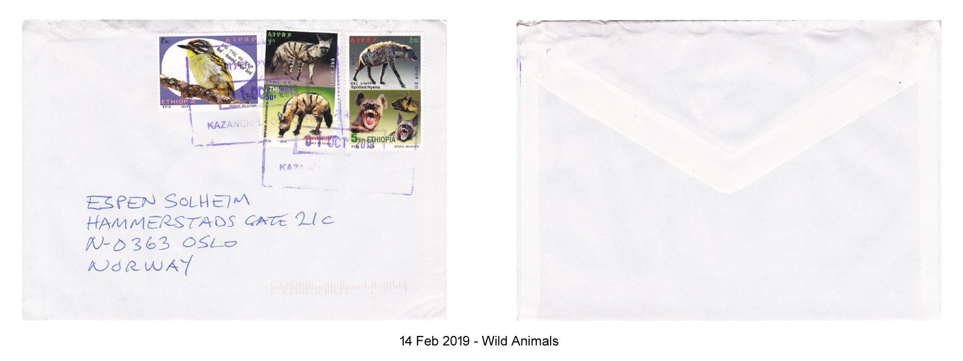 20190214 - Wild Animals